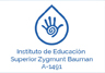 Instituto de Educación Superior  Zygmunt Bauman A-1491